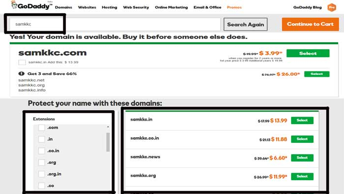 Countless Domain Names and Extensions